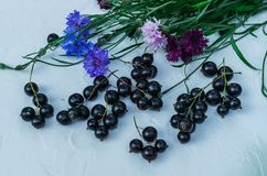 Black currant berries with cornflowers. For a diet and saturation with vitamins.  royalty free stock image