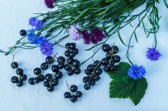 Black currant berries with cornflowers. For a diet and saturation with vitamins.  royalty free stock photo