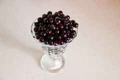 Black currant berries in a glass bowl Stock Photography