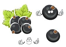 Black currant berry cartoon character Royalty Free Stock Images
