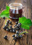 Black currant berry and jam Stock Image