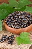 Black currant berry in a wooden bowl Stock Image