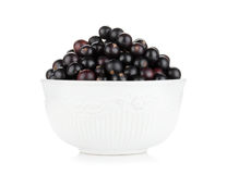 Black currant bowl Royalty Free Stock Photos