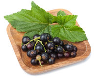Black currant in bowl isolated Stock Photography