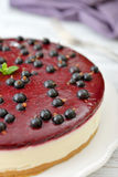 Black currant cheesecake Royalty Free Stock Photography