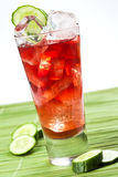 Black currant drink with cucumber Stock Photography