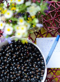Black currant and flowers. Flowers, love letter and black currant berries Stock Photo