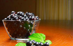 Black currant in a glass dish Stock Photo