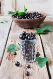 Black currant in a glass Royalty Free Stock Images