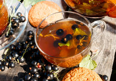 Black currant herbal tea, berries and oatmeal cookies Royalty Free Stock Images