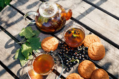 Black currant herbal tea and oatmeal cookies Stock Photo