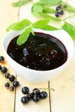 Black currant  jam Stock Image