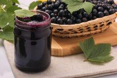 Black currant jam, preserving blackcurrants stock photo