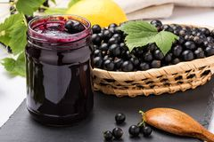 Black currant jam, preserving blackcurrants royalty free stock photos