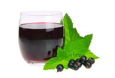 Black currant juice Stock Photography