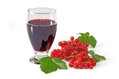 Black Currant Juice. A glass of black currant juice with garnish on light background royalty free stock photos