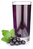 Black currant with juice and green leaf. On white background Royalty Free Stock Images