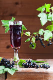 Black currant liquor and ripe berries Stock Photo