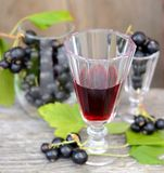 Black currant liquor and ripe berries  on  wooden Royalty Free Stock Image