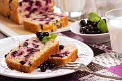 Black currant loaf cake Royalty Free Stock Photo