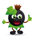 Black currant mascot royalty free stock photography