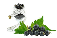 Black currant and meter Stock Images