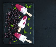 Black-currant milk ice-creams or popsicles with Royalty Free Stock Image