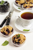 Black currant muffins Royalty Free Stock Image
