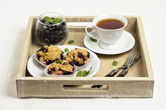 Black currant muffins Stock Photography