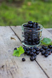Black currant. On the old table Stock Images