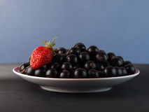 A black currant and one red mature strawberry Royalty Free Stock Image