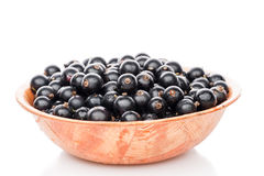Black currant in plate Stock Image