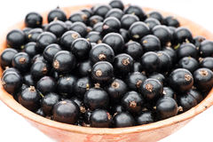 Black currant in plate Royalty Free Stock Images