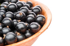 Black currant in plate Stock Photography