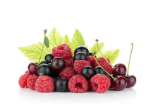 Black currant, raspberry and cherry Royalty Free Stock Photo