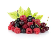Black currant, raspberry and cherry Stock Photography