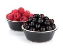 Black currant and raspberry Stock Photos
