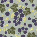 Black currant seamless pattern. Black currant with leaves and flowers on shabby background. Original simple flat illustration. Shabby style royalty free illustration