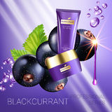 Black currant skin care series ads. Vector Illustration with blackcurrant, smoothing cream tube and container Stock Image