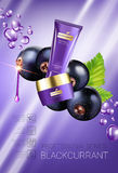 Black currant skin care series ads. Vector Illustration with blackcurrant, smoothing cream tube and container. Stock Photos