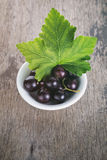 Black currant in a white bowl Stock Photos