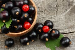 Black currant in wooden bowl with green leaf on old wooden background. top view Stock Image