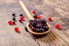Black currant in wooden spoon on rustic background Stock Photos