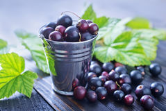 Black currant. On the wooden table Stock Image