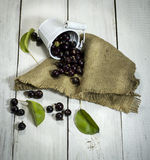 Black currants in a bucket on white wooden background. Black currants in a metal bucket on a white wooden background royalty free stock photography