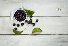 Black currants in a bucket on white wooden background. Black currants in a metal bucket on a white wooden background royalty free stock image