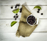 Black currants in a bucket on white wooden background Stock Photos