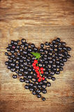 Black currants  in the form of hearts Stock Photography