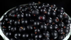Black Currants in a Glass stock video
