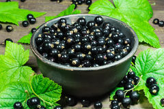 Black currants with green leaves in the pottery bowl on a wooden background Royalty Free Stock Photography